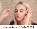 microblading  micropigmentation ...   Shutterstock . vector #1041665374