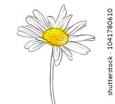 Vector Drawing Daisy Flower ...