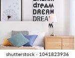 bedroom interior with elegant... | Shutterstock . vector #1041823936