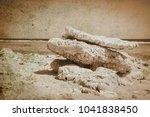 old photo beautiful seashore... | Shutterstock . vector #1041838450
