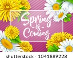 spring is coming with rectangle ... | Shutterstock .eps vector #1041889228