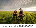 young farmers examing planted... | Shutterstock . vector #1041896536