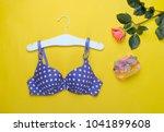 fashionable beautiful bra and... | Shutterstock . vector #1041899608