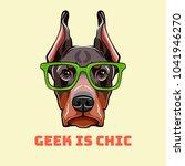 doberman pinscher face in a... | Shutterstock . vector #1041946270