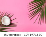 palm leaves and half of coconut ... | Shutterstock . vector #1041971530