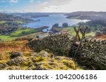autumnal landscape of lake... | Shutterstock . vector #1042006186