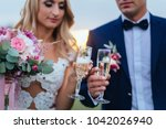bride and groom clang glasses... | Shutterstock . vector #1042026940