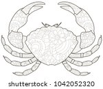 anti stress crab coloring book...   Shutterstock .eps vector #1042052320