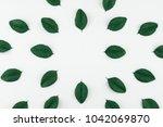 green paper leaves on white...   Shutterstock . vector #1042069870