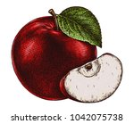 engrave isolated apple hand... | Shutterstock . vector #1042075738