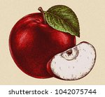 engrave isolated apple hand... | Shutterstock . vector #1042075744