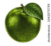 Engrave Isolated Apple Hand...