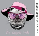 cat in the glasses and pink hat.... | Shutterstock . vector #1042113259