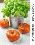 ripe red tomatoes with potted... | Shutterstock . vector #1042186930