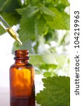 herbal medicine with dropper... | Shutterstock . vector #104219963