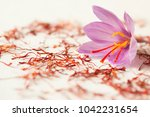 one saffron flower and a lot of ... | Shutterstock . vector #1042231654