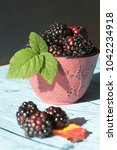 blackberries in a bowl | Shutterstock . vector #1042234918