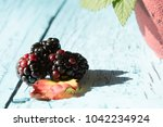 blackberries in a bowl | Shutterstock . vector #1042234924