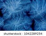 Frost Patterns On Window Glass