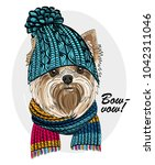 vector dog with blue knitted... | Shutterstock .eps vector #1042311046