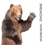taxidermy of a kamchatka brown... | Shutterstock . vector #1042341868