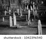 salem  massachusetts   united... | Shutterstock . vector #1042396540