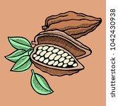 vector cocoa bean hand drawn... | Shutterstock .eps vector #1042430938