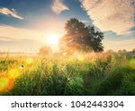 Stock photo vivid summer sunrise on green meadow and sunbeams through tree in the morning scenery landscape of 1042443304