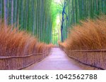 Bamboo Groves Public Park At...