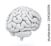 3d render of brain on white... | Shutterstock . vector #104263334