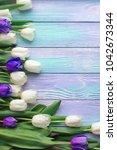 spring tulips flower on color...   Shutterstock . vector #1042673344