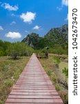 wooden bridge in perspective... | Shutterstock . vector #1042673470