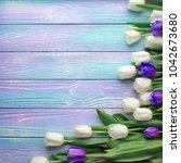 spring tulips flower on color...   Shutterstock . vector #1042673680