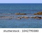 coast of the mediterranean sea... | Shutterstock . vector #1042790380