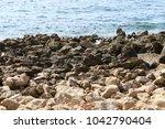coast of the mediterranean sea... | Shutterstock . vector #1042790404