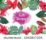 colorful summer tropical... | Shutterstock . vector #1042817104