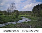 landscape of central european... | Shutterstock . vector #1042822990
