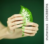 woman hands with green nail... | Shutterstock . vector #1042888546