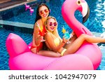 two cool sexy girls in bright... | Shutterstock . vector #1042947079