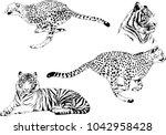 vector drawings sketches... | Shutterstock .eps vector #1042958428