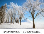 Snowy Trees In Clear Weather