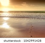 footprints in the sand on the... | Shutterstock . vector #1042991428