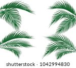 different in form tropical dark ... | Shutterstock . vector #1042994830