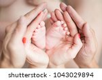 small legs in the hands | Shutterstock . vector #1043029894