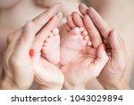 small legs in the hands | Shutterstock . vector #1043029894