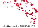 Stock photo red rose petals fly in a circle the center free space for your photos or text isolated white 1043044159