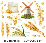 wheat  rice  oats  barley ... | Shutterstock .eps vector #1043057659