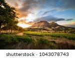 Wine Region Near Stellenbosch...