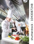 the chef prepares a dish in the ... | Shutterstock . vector #1043087248