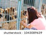 girl volunteer in the nursery... | Shutterstock . vector #1043089639
